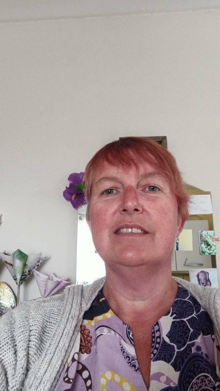 Karine 53 ans Trégueux