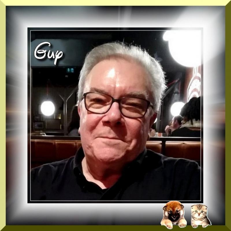 Guy 71 ans Saint Pol sur Mer